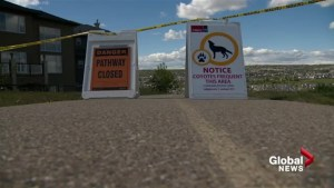 Coyote sightings in the city prompt walkway closures